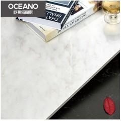 欧神诺瓷砖北欧客厅卧室防滑全抛釉ELN03580E皇家白