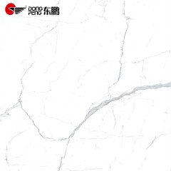 DONGPENG东鹏瓷砖 大板砖2400*1200客厅防滑耐磨地板砖 卡拉拉卡拉卡特