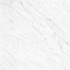 诺贝尔瓷砖星白800*800