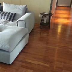 圣象三层实木---沙发